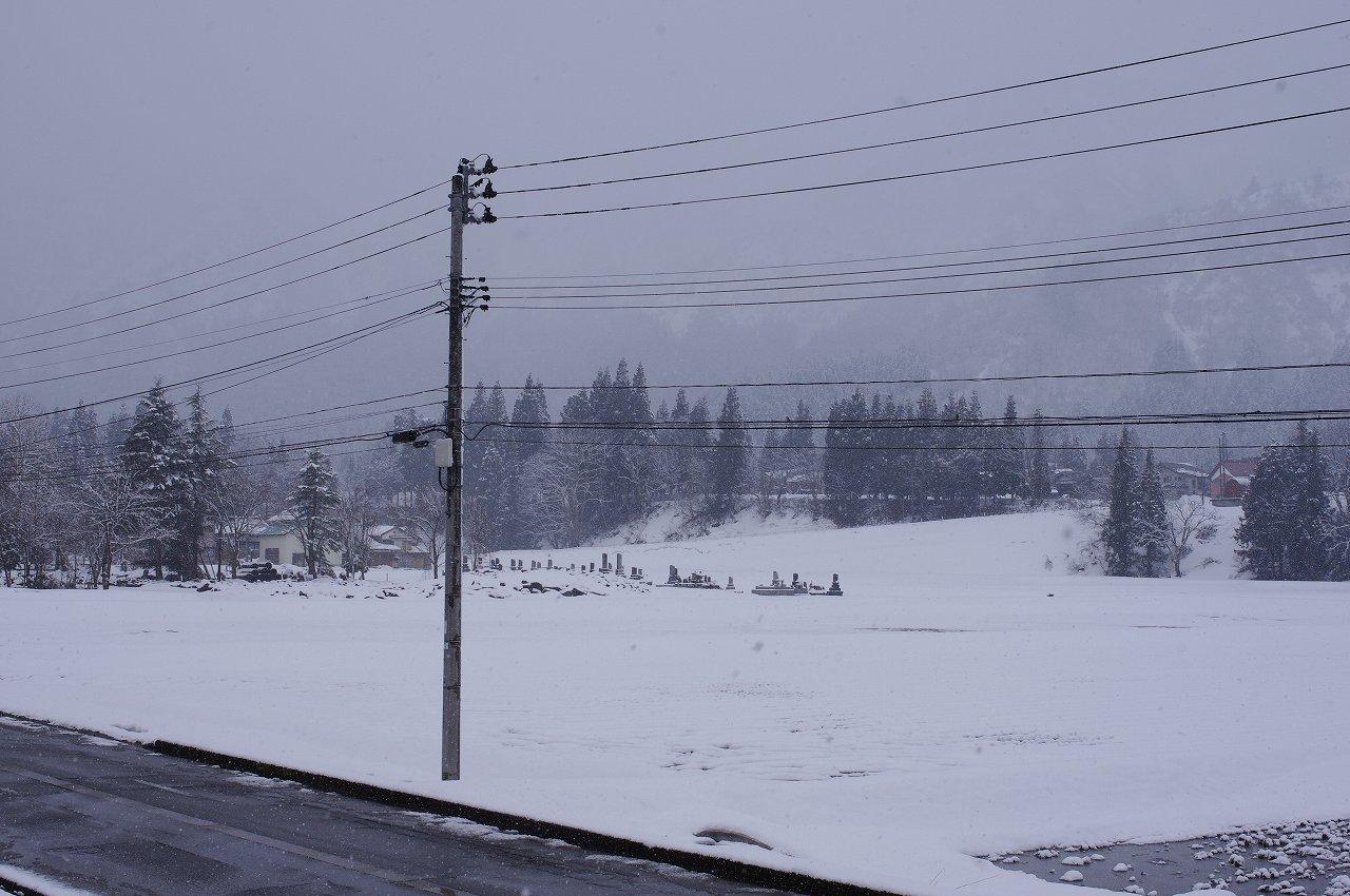 今日は冬に戻っています